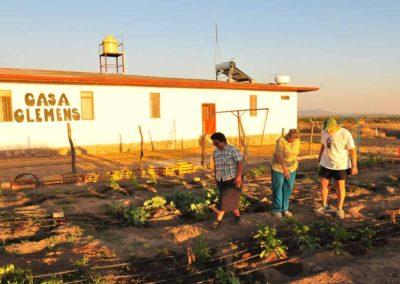 Organic-Garden-Outside-Casa-Clemens